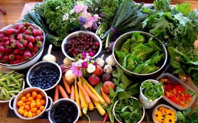 Food Resources in SLO County